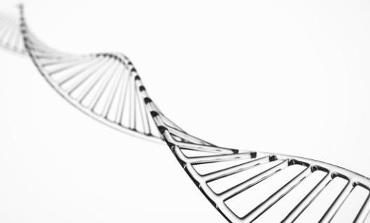PCR技術スマートアンプ